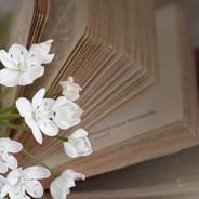 A világjáró könyvmolyoktól…