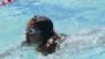 Már (nem) úszunk a boldogságban – avagy az úszástanulás kálváriája Svájcban